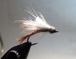 Dry flies in April in Rangeley, Maine? You bet!